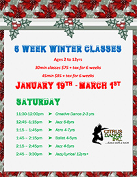 6 Week Winter Classes