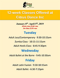 12 Week Adult Classes